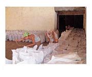 タヒボの製造工程-3-5